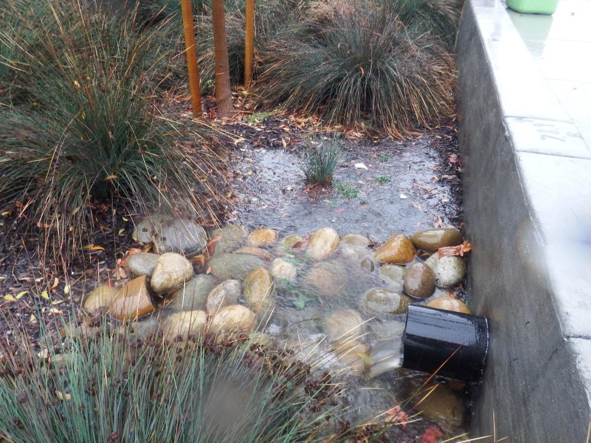 Bioretention unit on Osgood Road in Fremont, California (Source: Alicia Gilbreath)
